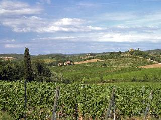 Two Chianti Farmhouses for Large Group on a Wine Estate - Casa del Grano and