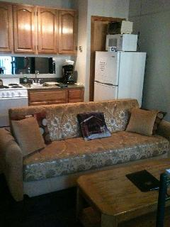 Kitchenette/sleeper sofa