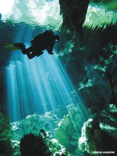 Cave Diving - there are lots of local cenotes to snorkel or scuba dive in.