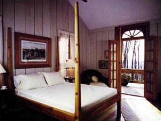 Cabin at Wintergreen - VA Mt. Resort Luxury Rental