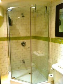 1 Bedroom Private Apartment- Bathroom