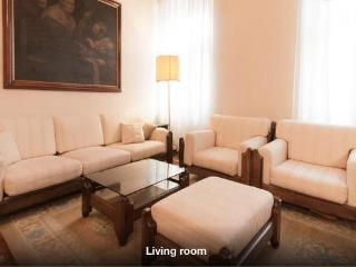 Large & Beautiful Apartment in Old Town Ljubljana, Liubliana