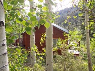 Spruce Ridge Guest Cabin on Llama Ranch Close to Monarch Ski Resort