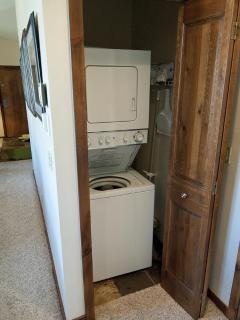 Clothes washer and dryer in the unit