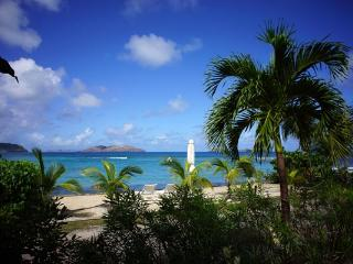 Quiet, peaceful villa, close to beach with a pool and spa WV EZE, Saint-Barthélemy