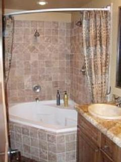 Master bathroom with 2 shower heads and 2 person Jacuzzi tub