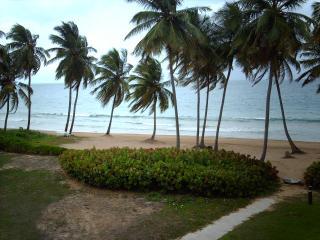 BEACH VILLA 181, Humacao