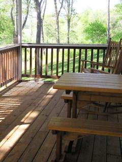 Relax & Picnic on the Large Screened-In Deck - Listen to the Wildlife and Melody of The River's Song