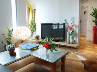 Ideal Group of Family Vacation Rental in Paris (3rd Floor)