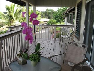 Lopaka's Family Lodge in Hilo