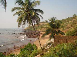 The Nest - 2 BHK furnished AC house in Siolim Goa