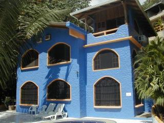 ItsMyCasa's Casa Mono Titi Squirrel Monkey Villa