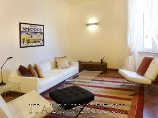 Perfect Very Large Bright Sleek Roman Apartment-All Modern Convenience-Rigoletto