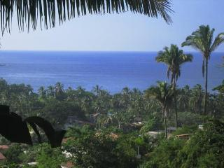 Extra Private Ocean-View double height Loft Apt, Sayulita