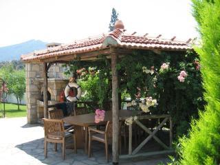 ZEYTIN KORU, large villa with Rock Tombs views. LATE BOOKING DISCOUNTS AVAILABLE