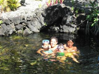 Natural Spring Fed Warm Pond surrounds you.  Kids Love it !