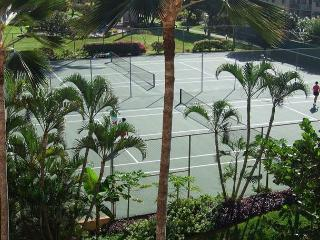 3 Tennis Court Areas