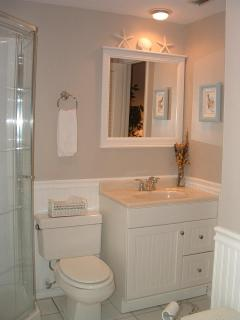 Large Master bathroom with Shower and Jacuzzi Tub, Wainscoting