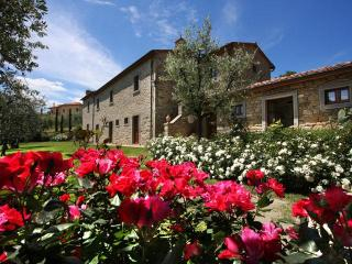 Luxury Villa, A/C, Views, village walking distance, Cortona