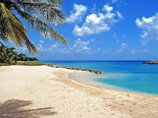 Luxury 7 bedroom Barbados villa. The Privacy! The Location!