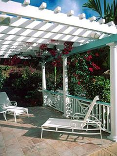 The patio with trellis is an inviting sitting area of dappled sunlight.