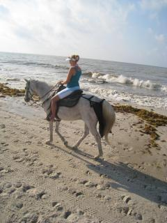 Horseback riding on the beach is nearby.