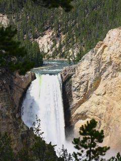Lower Falls in Yellowstone Park
