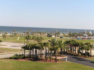 Beach or Park Views from Every Room