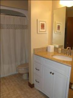 Lower level bath with tub/shower combo