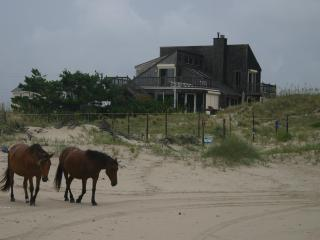 Charming Private Oceanfront Home in 4X4 Area, Corolla