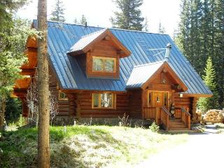 Log Cabin in the Woods - A true Mountain Retreat
