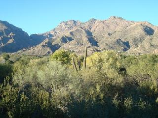 1 Bedrm-den with Breathtaking Mountain and Ventana Golf Course  Views!