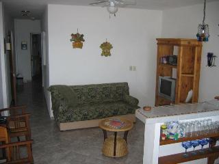 2-4 Br Condo - 1 Block from Los Muertos Beach, Puerto Vallarta