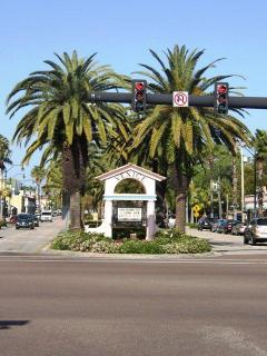 Welcome to the Downtown Venice Island Historic Area Shopping District