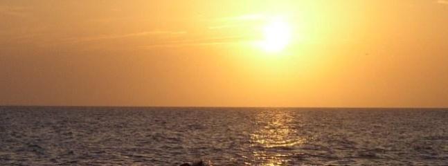Venice Florida Sunset