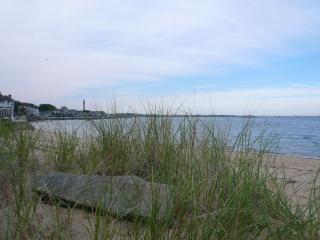 Private Beach across the street