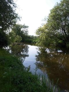 River Cherwell from gardens