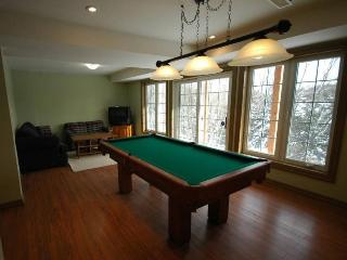 Lower Level Games Room inc pool table
