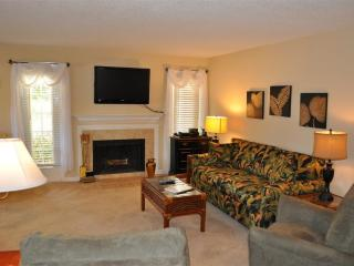 Living Area with new furniture and pull-out sofa bed.  42' Flat Panel TV includes HIGH DEF Channels