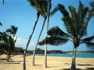 1BR 2BA*Ocean Sunset*Senior Discounts*Summer $110*, Waikoloa
