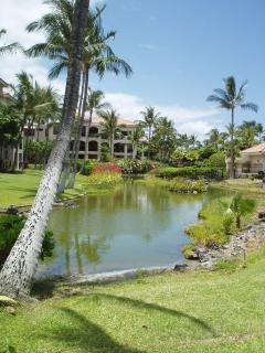 luxurious landscaping and lagoons