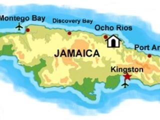 Frangipani - Jamaica