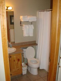 Renovated Bathroom in Master Bedroom with heated tiles.
