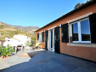 Lambiccu - Amazing Luxury Apartment in Manarola