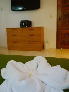 'Bougainvillea' villa has 2 flat HDTVs with best quality satellite Western programming