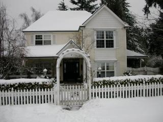 Victorian in Winter
