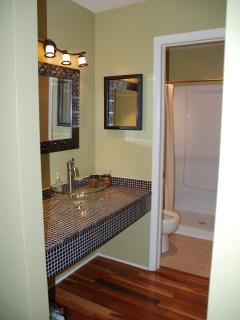 Master Bathroom -  All newly renovated