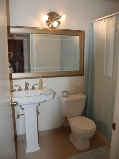 Guest Bathroom - Clean and new!