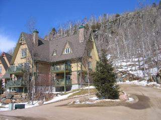 Beautiful Condo in Le Plateau, Mont Tremblant