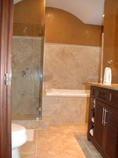 Master Bathroom - Shower & Tub